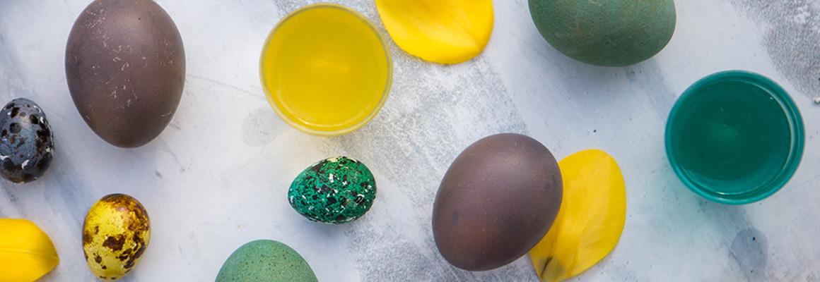 Genießen Sie unsere Osterschokolade in Form von kleinen Eiern, Oliven oder mit Schokolade überzogenen Mandeln. Die Schokolade wird Ihnen innerhalb von 24 Stunden nach Hause geliefert, und der Versand ist bis zum Ende der Sperrzeit kostenlos.